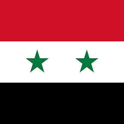 magFlags Flagge: Large Standard of The President of Syria | Fictional Presidential Standard of Syria | Fahne 1.35m² | 120x120cm » Fahne 100% Made in Germany