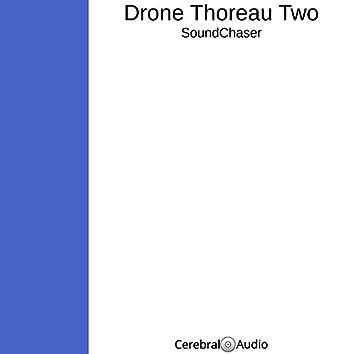 Drone Thoreau Two