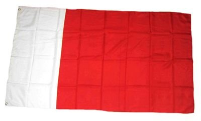 Fahne / Flagge Dubai 90 x 150 cm Flaggen Fahnen