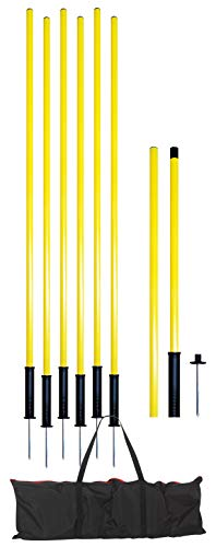 American Challenge Spring Loaded Coaching Poles