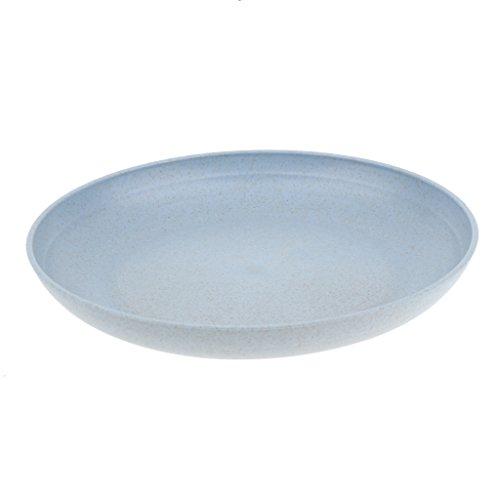 Sharplace 1 Pièce Assiette de Nourriture Vaisselle de Camping et Randonnée Assiette Pique-Nique Plats de Service - Bleu, 20cm