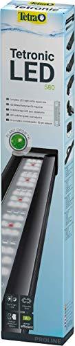 Tetra Tetronic LED ProLine Aquarium-Beleuchtung, Wasserbeleuchtung mit Tag- und Nachtmodus, 580 mm (ausziehbar bis 820 mm)