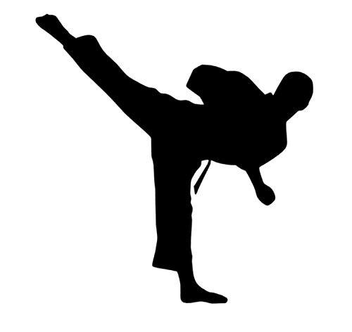 Generic Karate Aufkleber in 10cm, 15cm, 20cm, Kickboxen Kampfsport Auto Aufkleber Karatekämpfer (150/3) (20cm, schwarz Glanz)
