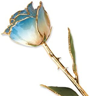 Allmygold Jewelers Long Stem Dipped 24K Gold Trim White & Blue Lacquered Genuine Rose In Gift Box