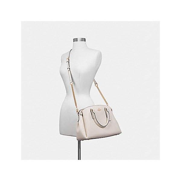 Fashion Shopping COACH Signature Mini Sage Carryall