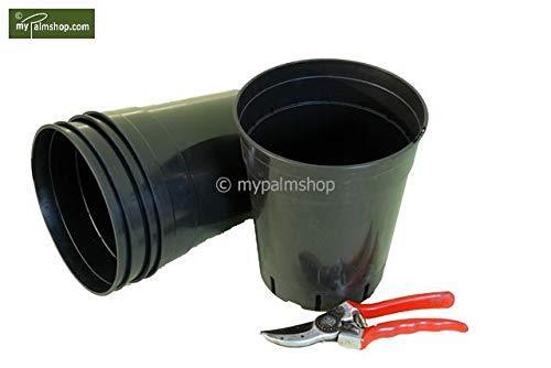 Pflanzenfuchs® Tiefer runder Palmentopf - Deep Round palmpot - 7ltr. (5)