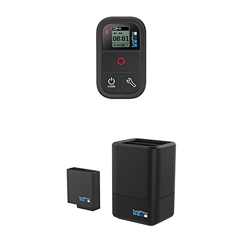 GoPro Smart Remote with Dual Battery Charger