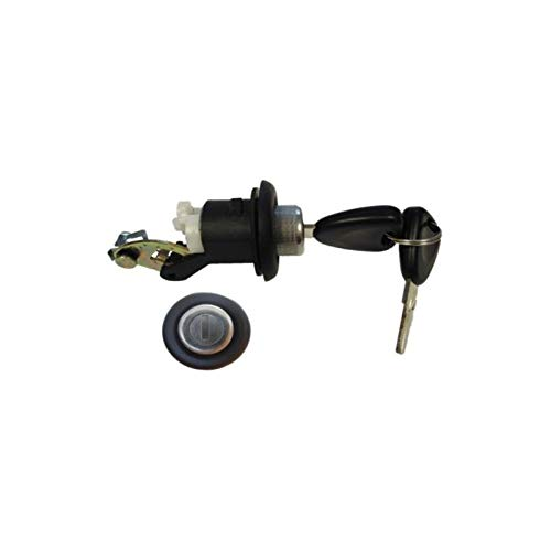 Barillet coffre Dacia logan sandero OE 905020198R