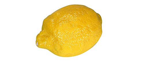 Lebensmittelattrappe citron-ladenausstattung dekonachbildung