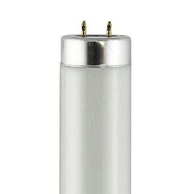 F14T12-CW - Watts: 14W, Color Temperature: 4200K (Cool White)