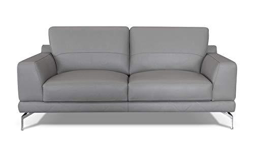 Amazon Marke -Alkove Holt Modernes Ledersofa, 2-Sitzer Maxi, HELLGRAU