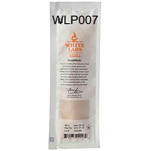 WLP007 White Labs Dry English Ale Liquid Yeast
