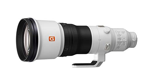 FE 600mm F4 GM Super Telephoto Lens