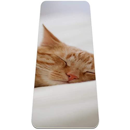 ZDL Las alfombrillas de yoga Lazy Cat son súper gruesas, antideslizantes, adecuadas para todo tipo de yoga, pilates y ejercicios de suelo, esterillas de ejercicio.
