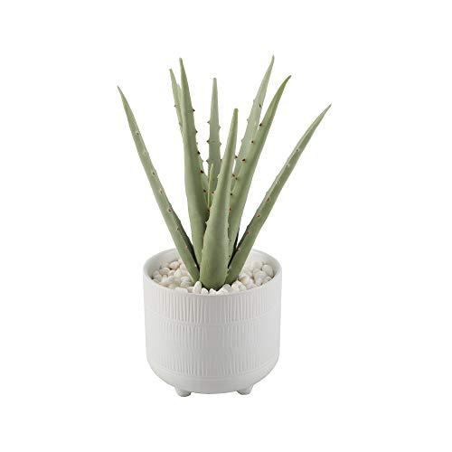 Flora Bunda Artificial Plants 10' Aloe in 5' Barcode Footed Ceramic