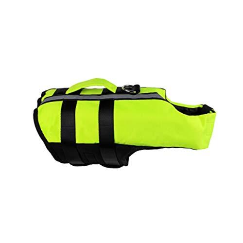 HENGXIANG Hond Leven Jack, Nieuwe Airbag Leven Jack, Hond Praktijk Badpak, Zilver Licht Groen Zwemmen Ring, L, Groen