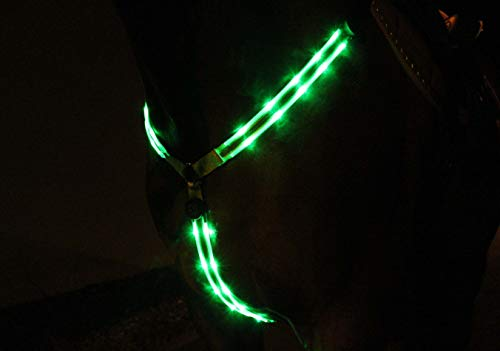 Pferdebeleuchtungen LED-Vorgeschirr/Vorderzeug, Breatplast, WB grün