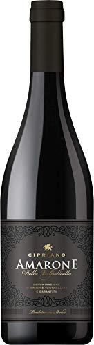 Cipriano Amarone della Valpolicella Rotwein italienischer Wein trocken DOCG Italien