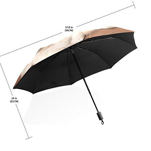 Regenschirm Zwei Welpen des Spitz-Hundes 3 falten leichtes Anti-UV