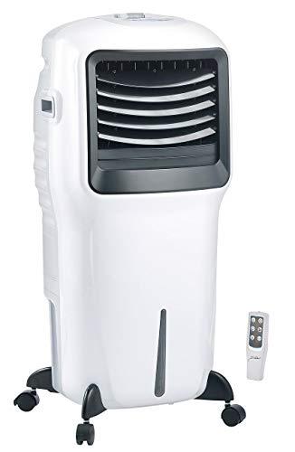 Sichler Haushaltsgeräte Verdunstungsluftkühler: Verdunstungs-Luftkühler LW-550 mit Ionisator und Timer, 20 l, 110 Watt (Kühllüfter Wohnung)