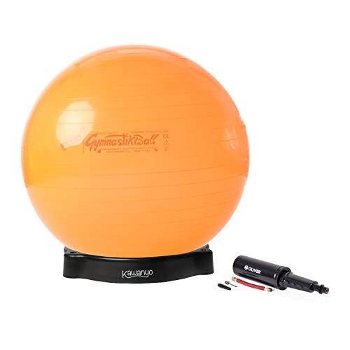 Pezziball Standard Fluo 65 cm mit Pumpe & Ballschale