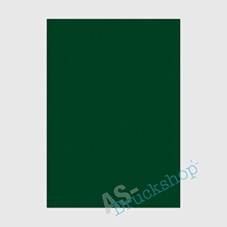 Farbiges Papier   Schreibpapier  Racing Grün    DIN A4   100g   gerippt   100 Blatt B073VH947M   Charakteristisch