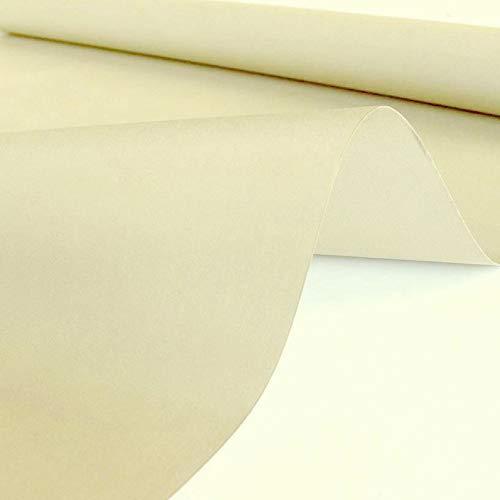 TOLKO Sonnenschutz Markisen-Stoffe als Meterware für Terrassen-Überdachung und Beschattung   mit UV-Schutz 60+   Wasserdicht, Extra Langlebig - Ohne Ausbleichen - 120cm breit (Sand-Beige)