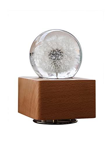 SEINHIJO 3D Music Box Lampada Proiettore Luce Notte Luminosa Rotante Sfera di Cristallo Faggio Base Compleanno Regali Natale
