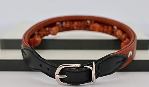 Generisch Hundehalsband aus Leder mit natürlichem Baltischen Bernstein | Bernsteinkette für Hunde | Zeckenhalsband (50-56 cm)