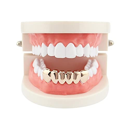 Halloween Gold Vampire Fangs Lower Six Teeth Glossy Hip-hop Braces 18k Gold-Plated Dentures Halloween Gold Teeth Vampire Fangs Fake Teeth for Halloween Cosplay Costume Props (a)