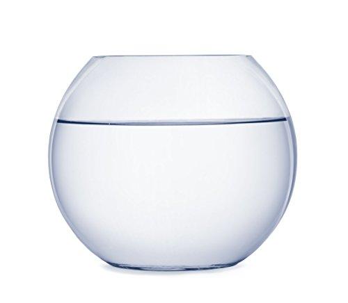 SACHI テラリウム 観葉植物 インテリア アクアリウム 金魚鉢 にも (15cm)