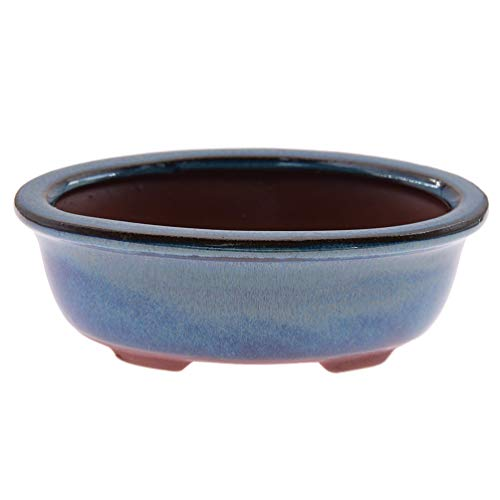 KOZOREN Chinese Bonsai Pot Oval Glazed Flower Pot Planter Home Garden Decor/Mini Ceramic Pots, A