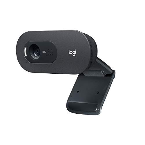 Logitech C505 HD Webcam - 720p externe USB Kamera für den Computer-Bildschirm mit Langstreckenmikrofon - Kompatibel mit PC und Mac - Grau