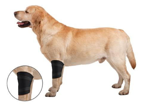ZenPet Elbow Wrap for Dogs (Medium)