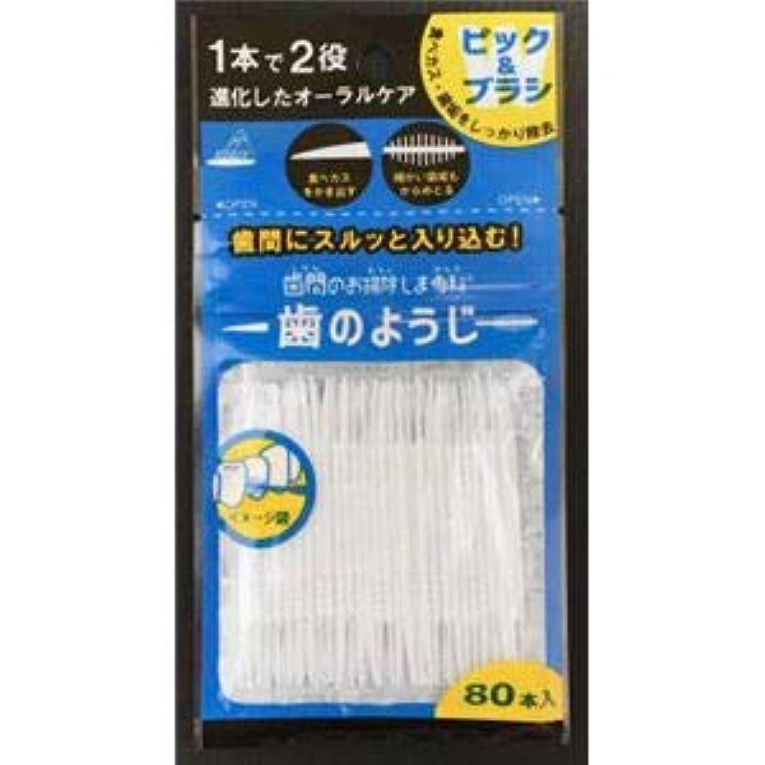 過言波ワイン(まとめ)アヌシ OB-807 歯間のお掃除しま専科 歯のようじ80本入 【×5点セット】