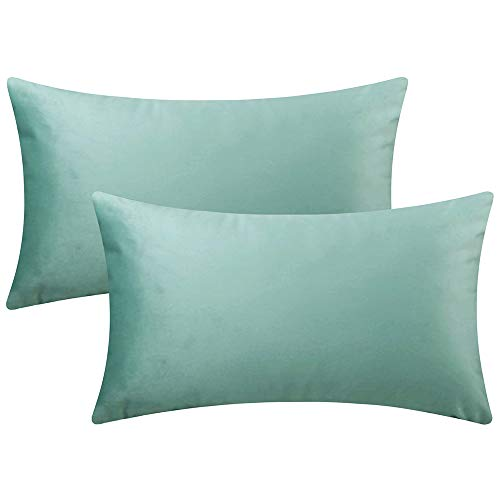 Artcest Set of 2 Cozy Velvet Decorative Rectangular Throw Pillow Cases, Soft Solid Lumbar Cushion Covers for Sofa Couch and Bed, 12' x20 (Seafoam)