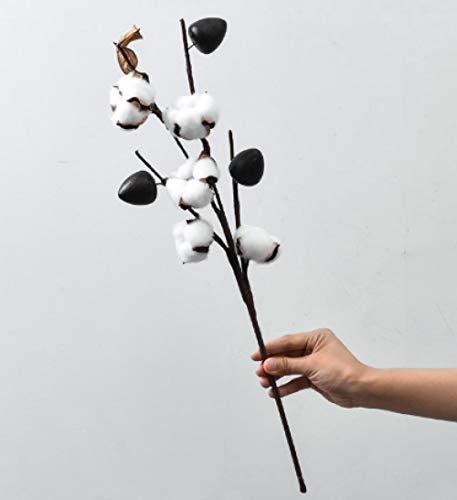 pah-macy Ramo de Flores Secas Naturales Ramas Algodon Artificial Flor de Algodon Seca Blanco Flores Hogar Bodas Fiestas Cocina Escritorio Restaurante-5 Ramas de algodón_Ramas secas