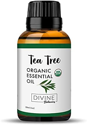 Top 10 Best tea tree organic essential oil Reviews