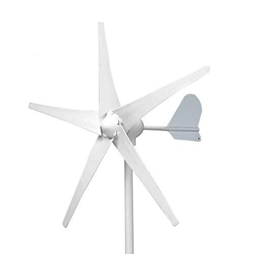 pequeño y compacto Aerogenerador Horizontal LQQ 3000W / 4000W / 5000W 12V / 24V / 48V3 / 5 Palas Aerogenerador …