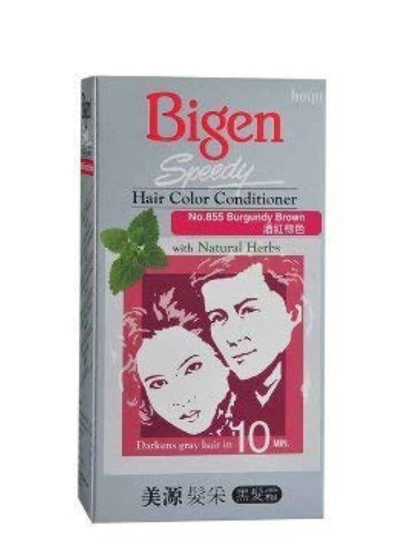 付与拷問生産的BIGEN クイックバーガンディブラウンのヘアコンディショナー天然ハーブ1