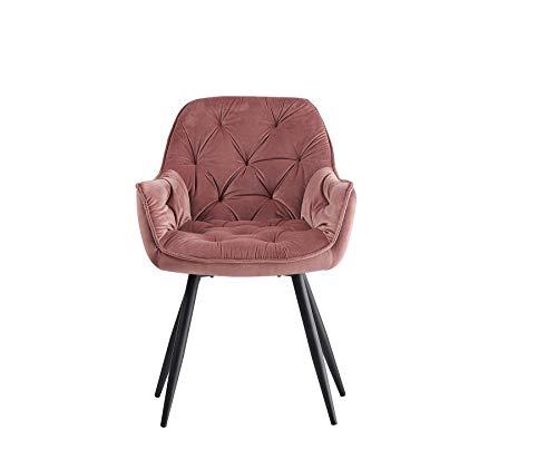 Greneric 1X Esszimmerstuhl Rosa aus Stoff (Samt) Wohnzimmerstuhl Farbauswahl Retro Design Armlehnstuhl Stuhl mit Rückenlehne Sessel Metallbeine Schwarz (Rosa, 1)