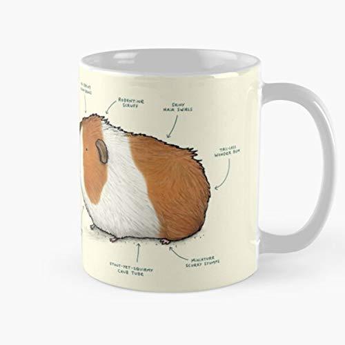 Anatomy Pig Mug Guinea Of A Best Ceramic Quality 11 Oz Mug