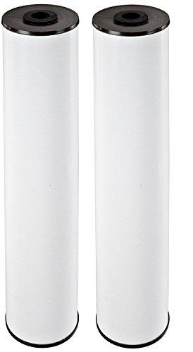 Pentek 155263, RFFE20-BB Radial Flow Iron Reduction Cartridge (Pack of 2)