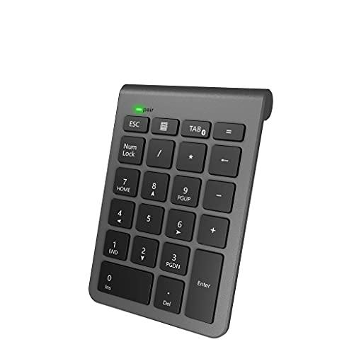 Bluetooth テンキーボード Alcey ワイヤレス テンキーパッド 無線 数字キーボード 22キー ブルートゥース数値キーボード 小型 持ち運び便利 コンパクト 多機能ナンバーパッド PC/Laptop/ノートブックなどに対応 (スペースグレイ)