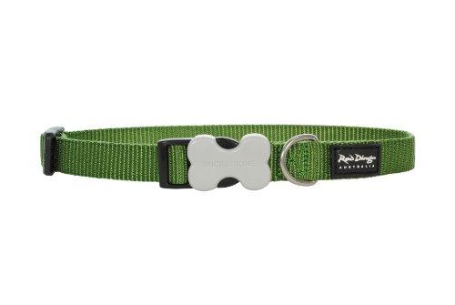 Red Dingo - Collar para Perro (25 mm, 40-60 cm), Color Verde