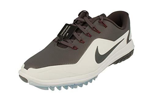 Nike Herren Lunar Control Vapor 2 Golfschuhe, Grau (Gris 004), 41 EU