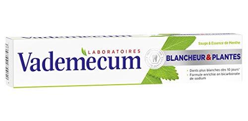 """Vademecum Weißsein Zahnpasta Und Pflanzen Goa """"T Sage und das Wesen der Mint 75ml (Satz 4) 1"""