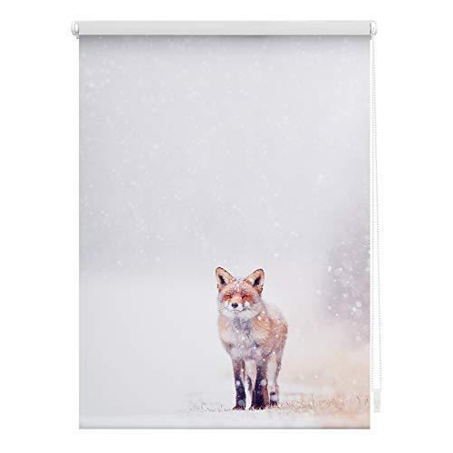 Lichtblick KRT.070.150.374 Rollo Klemmfix, ohne Bohren, Blickdicht, Fuchs im Schnee - Weiß Rot 70 x 150 cm (B x L)
