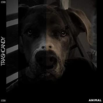 Animal (feat. Brad White)