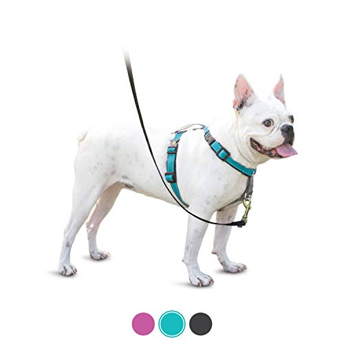PetSafe 3in1 Harness, from The Makers of The Easy Walk Harness, Fully Adjustable No-Pull Dog Harness,Teal,Small